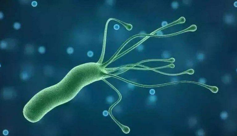 感染幽门螺杆菌或诱发胃癌,当心病菌在家庭内传播!